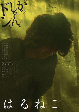 「はるねこ」のポスター/チラシ/フライヤー