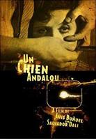 「アンダルシアの犬」のポスター/チラシ/フライヤー