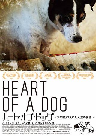 「ハート・オブ・ドッグ 犬が教えてくれた人生の練習」のポスター/チラシ/フライヤー