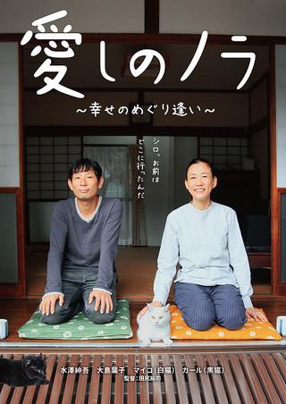 「愛しのノラ 幸せのめぐり逢い」のポスター/チラシ/フライヤー