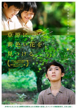 「草原に黄色い花を見つける」のポスター/チラシ/フライヤー