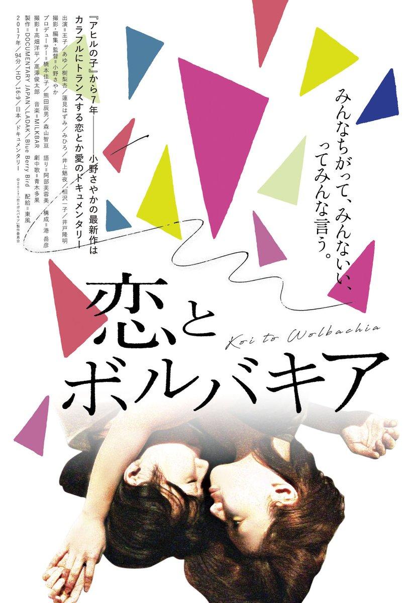「恋とボルバキア」のポスター/チラシ/フライヤー