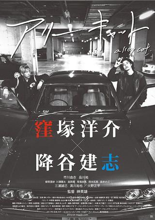 「アリーキャット」のポスター/チラシ/フライヤー