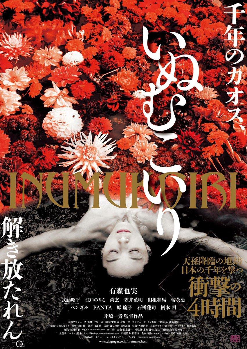 「いぬむこいり」のポスター/チラシ/フライヤー