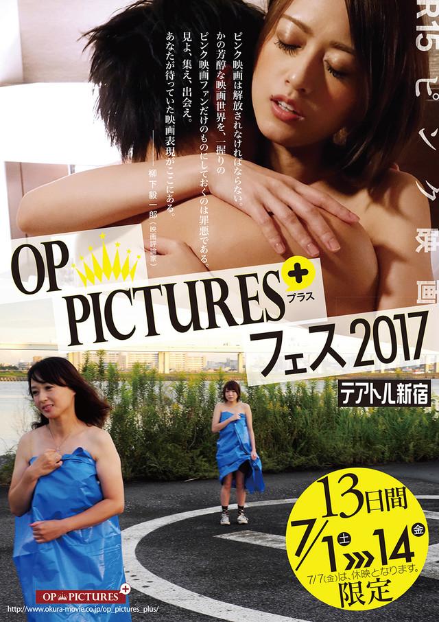 「犯る男・最終版」のポスター/チラシ/フライヤー
