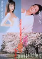 「桜の樹の下で」のポスター/チラシ/フライヤー