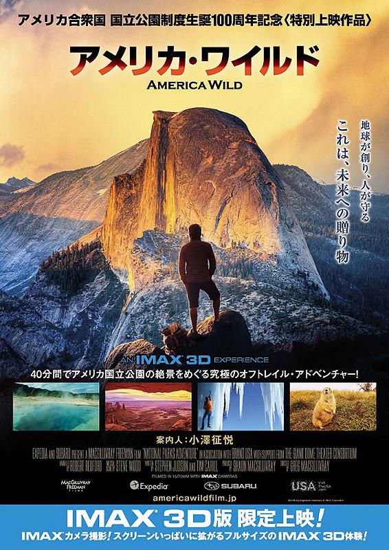 「アメリカ・ワイルド」のポスター/チラシ/フライヤー