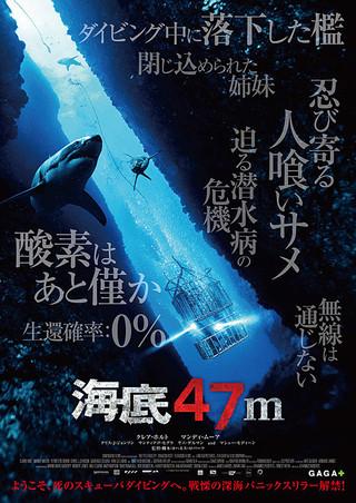「海底47m」のポスター/チラシ/フライヤー