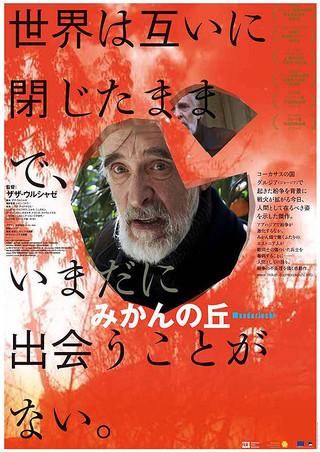 「みかんの丘」のポスター/チラシ/フライヤー