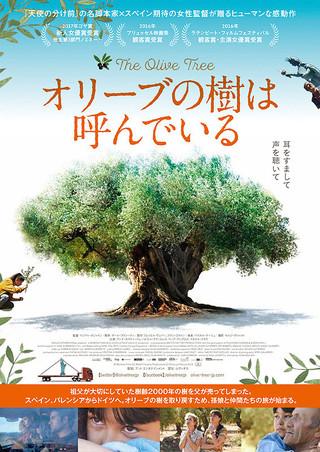 「オリーブの樹は呼んでいる」のポスター/チラシ/フライヤー